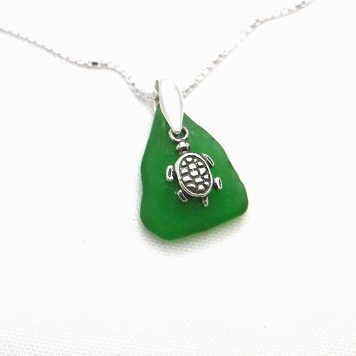 green turtle 3