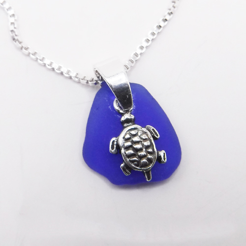 cobalt blue with turtle 1