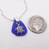 cobalt blue with turtle 3
