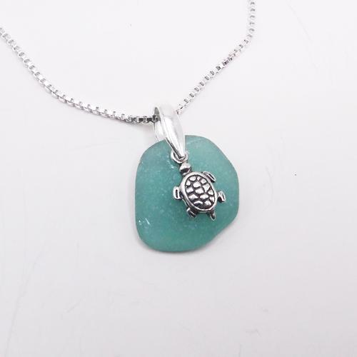 green turtle1