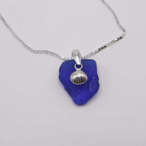 blue with shell 1